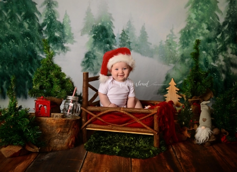 Christmas Mini Sessions Sydney Campbelltown