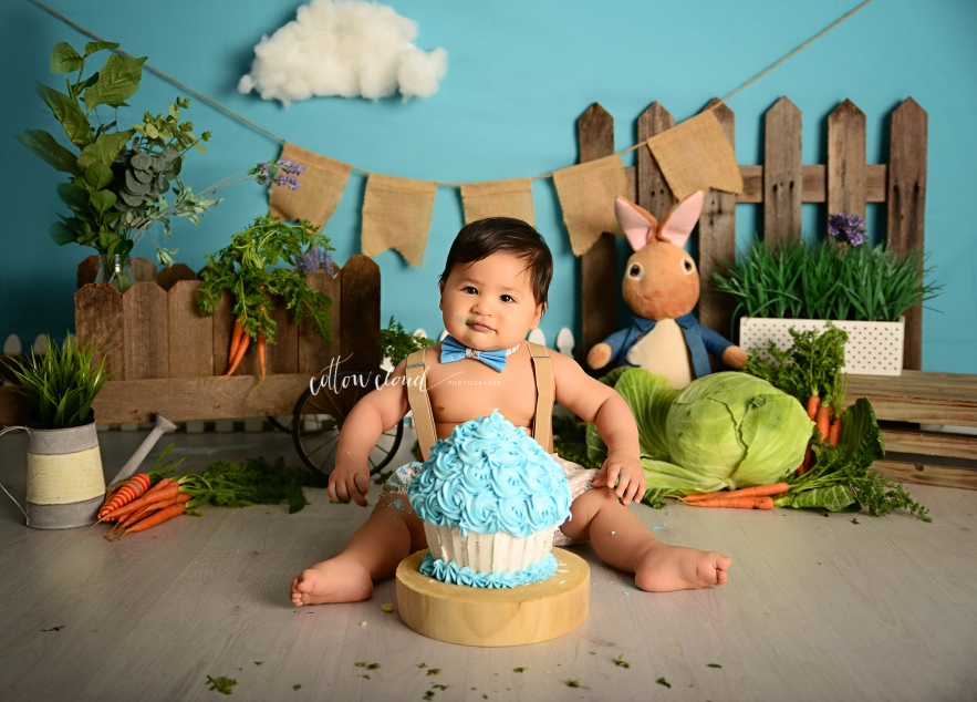 Peter rabbit cake smash photography sydney campbelltown